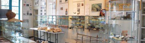 Extension du musée de Béruges !
